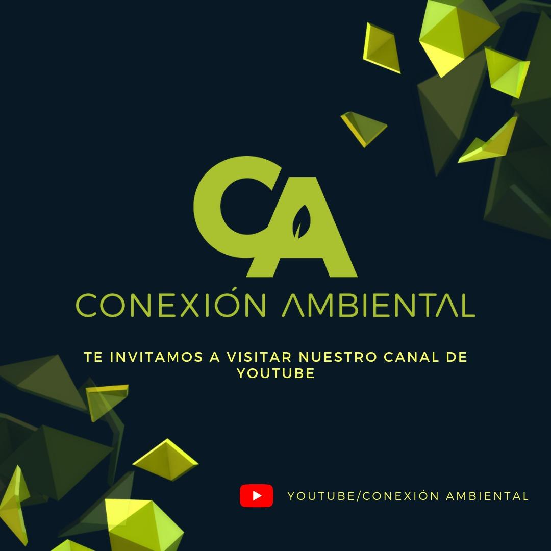 Link al canal de Youtube de Conexión Ambiental